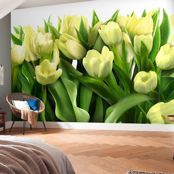 Wall Murals: Yellow tulips