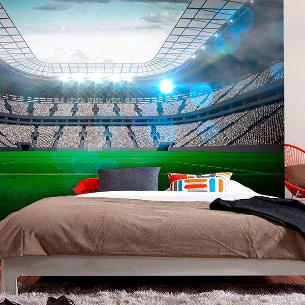 Wall Murals: Modern football stadium 0