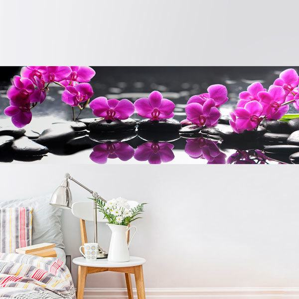 Wall Murals: Purple Orchids