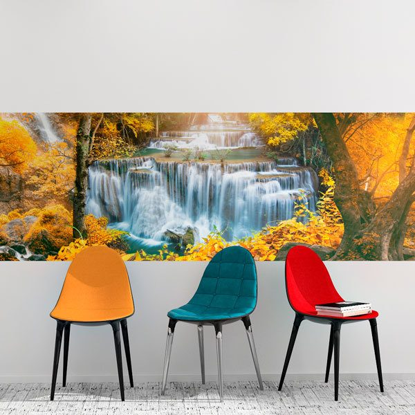 Wall Murals: Forest in autumn