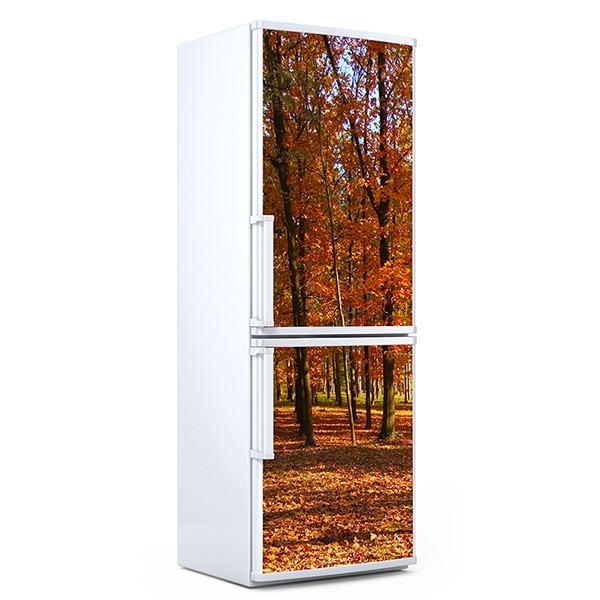 Wall Stickers: Bosque en otoño