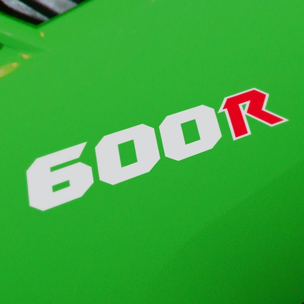 Car and Motorbike Stickers: GPZ600R, 600R