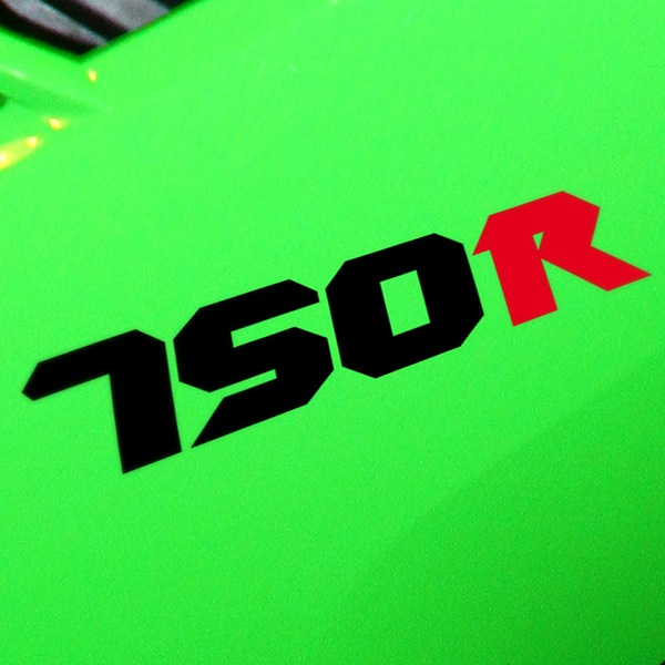 Car & Motorbike Stickers: GPZ750R, 750R