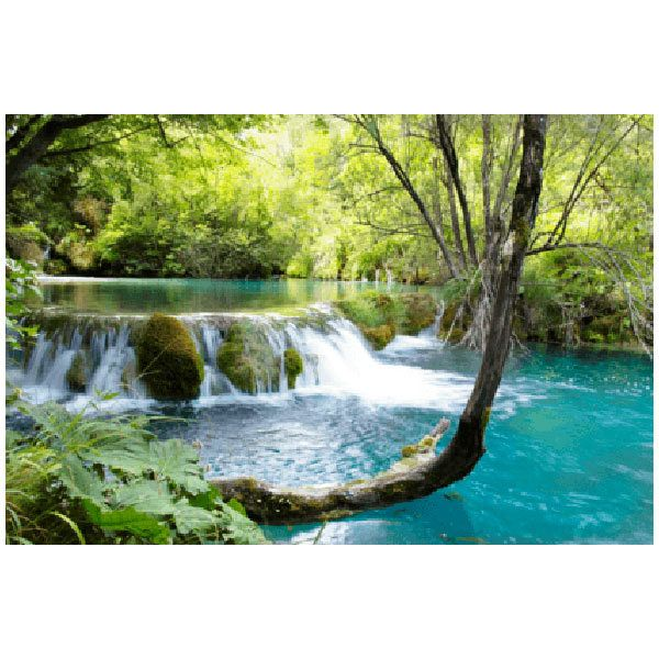 Wall Stickers: Vegetation and River with waterfall