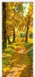 Wall Stickers: Forest path in autumn 6