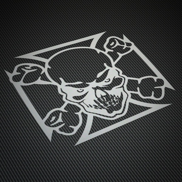 Car & Motorbike Stickers: Skull shield
