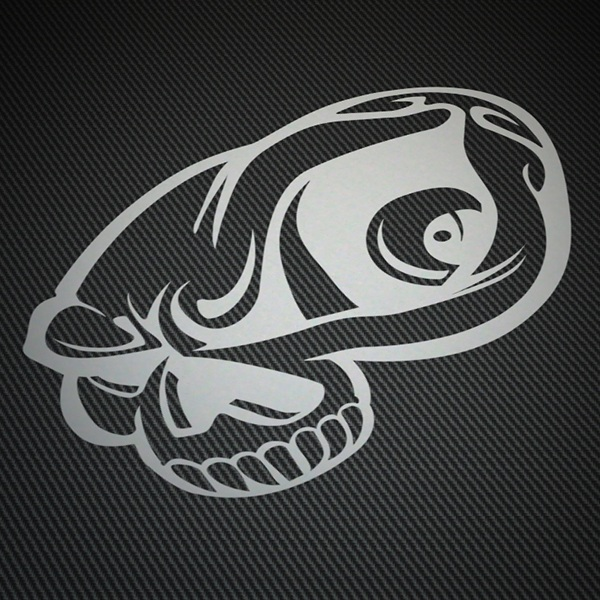 Car & Motorbike Stickers: Skull watching
