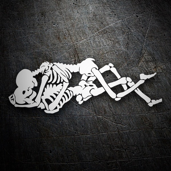 Car & Motorbike Stickers: Hugged skulls