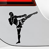 Car & Motorbike Stickers: Kick Boxing Front 2
