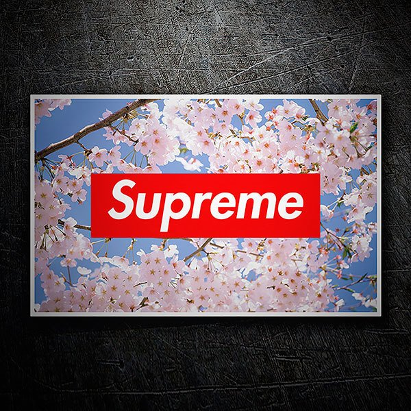 Car & Motorbike Stickers: Supreme almond tree