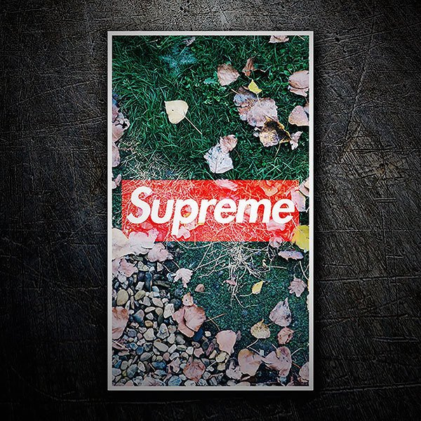 Car & Motorbike Stickers: Supreme autumn