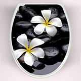 Wall Stickers: Top WC flowers frangipani 3