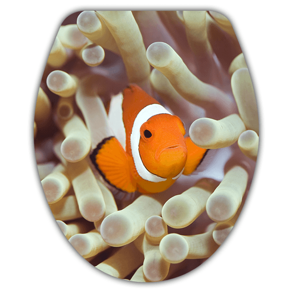 Wall Stickers: Top WC clownfish