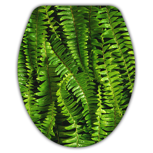 Wall Stickers: Top WC ferns