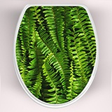 Wall Stickers: Top WC ferns 3