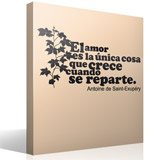Wall Stickers: Amor Crece Exupery 5