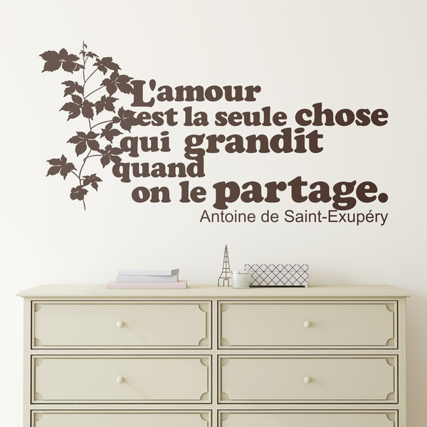 french phrases wall decals & wall stickers - muraldecal