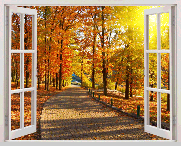 Wall Stickers: Autumn in the park 0