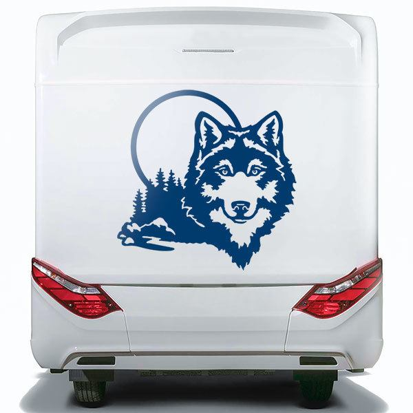 Car & Motorbike Stickers: Wolf in the forest
