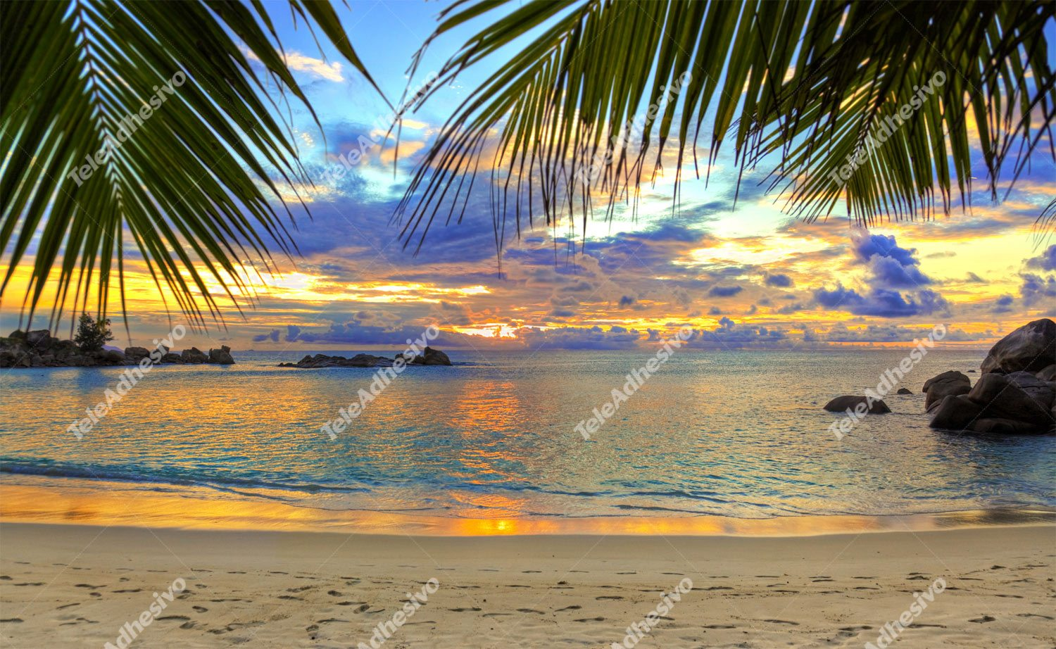 Wall Murals: Sunset beach