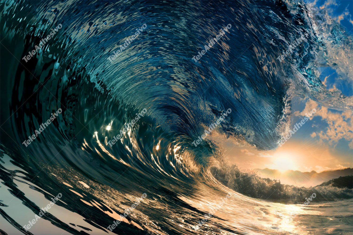 Wall Murals: Under the wave
