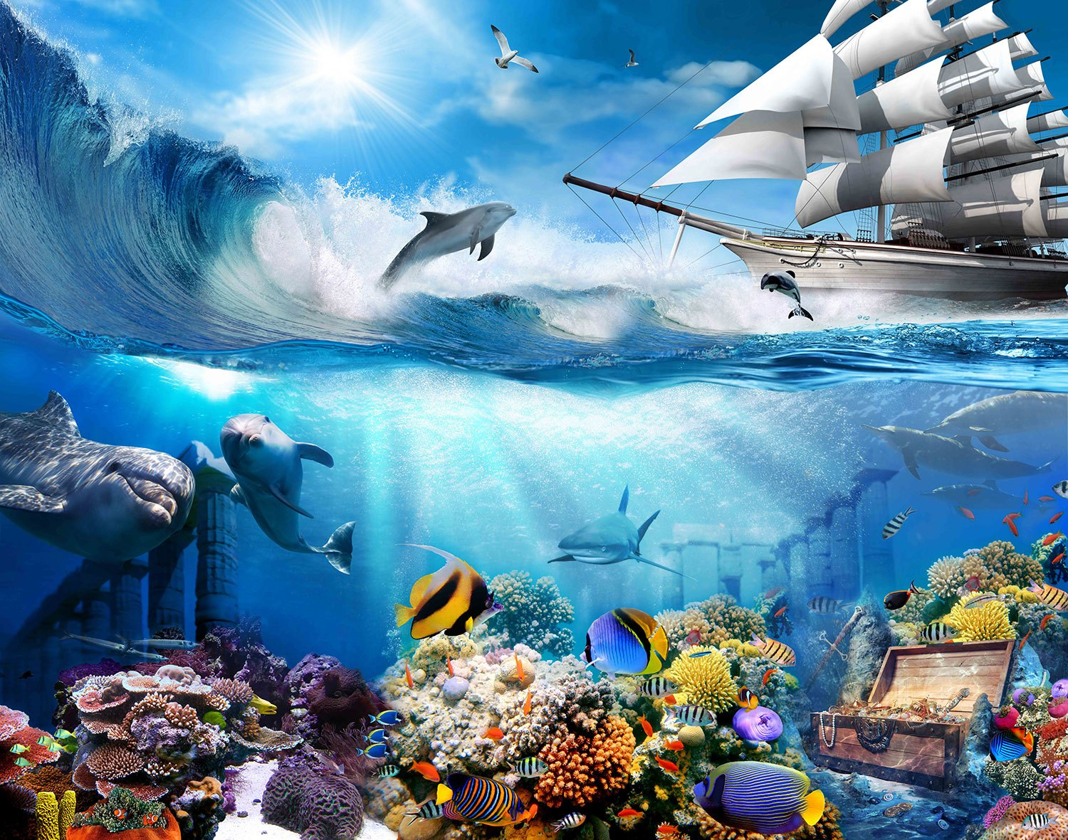 Wall Murals: Dolphin marine background