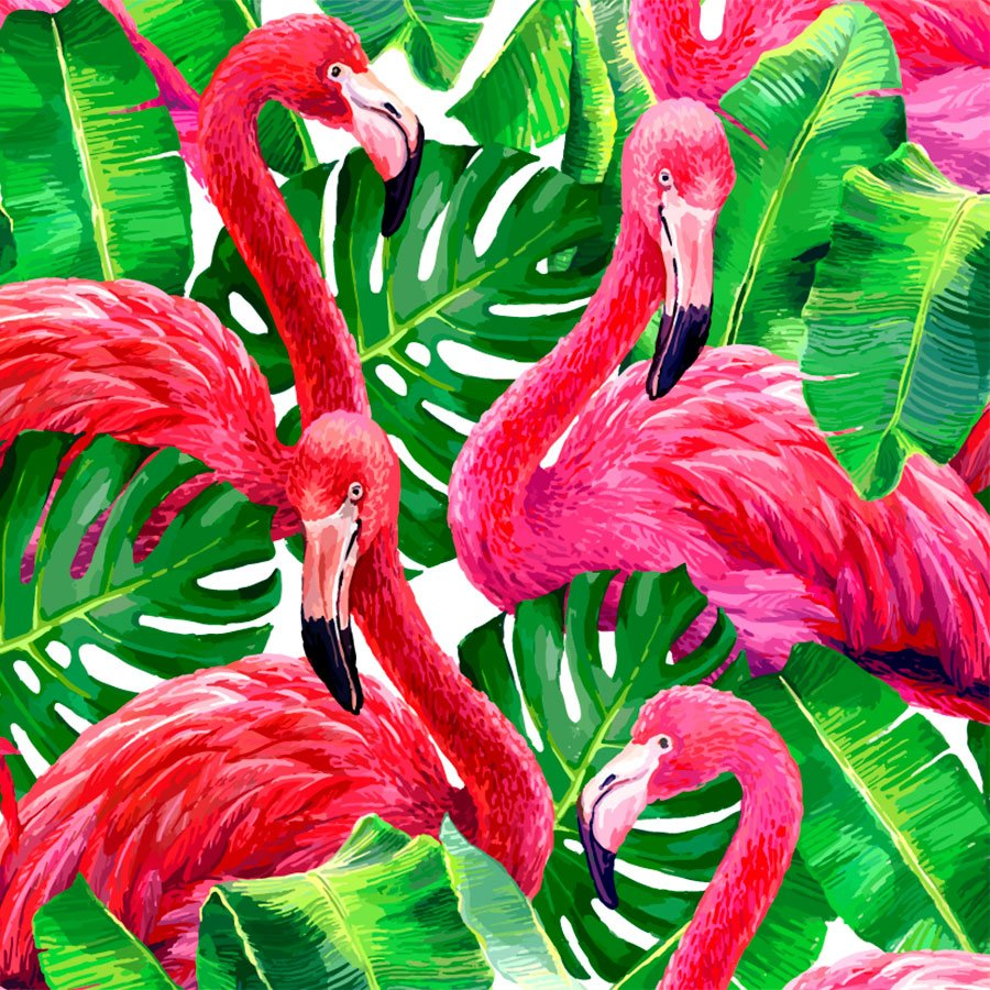 Wall Murals: Printed of flamingos